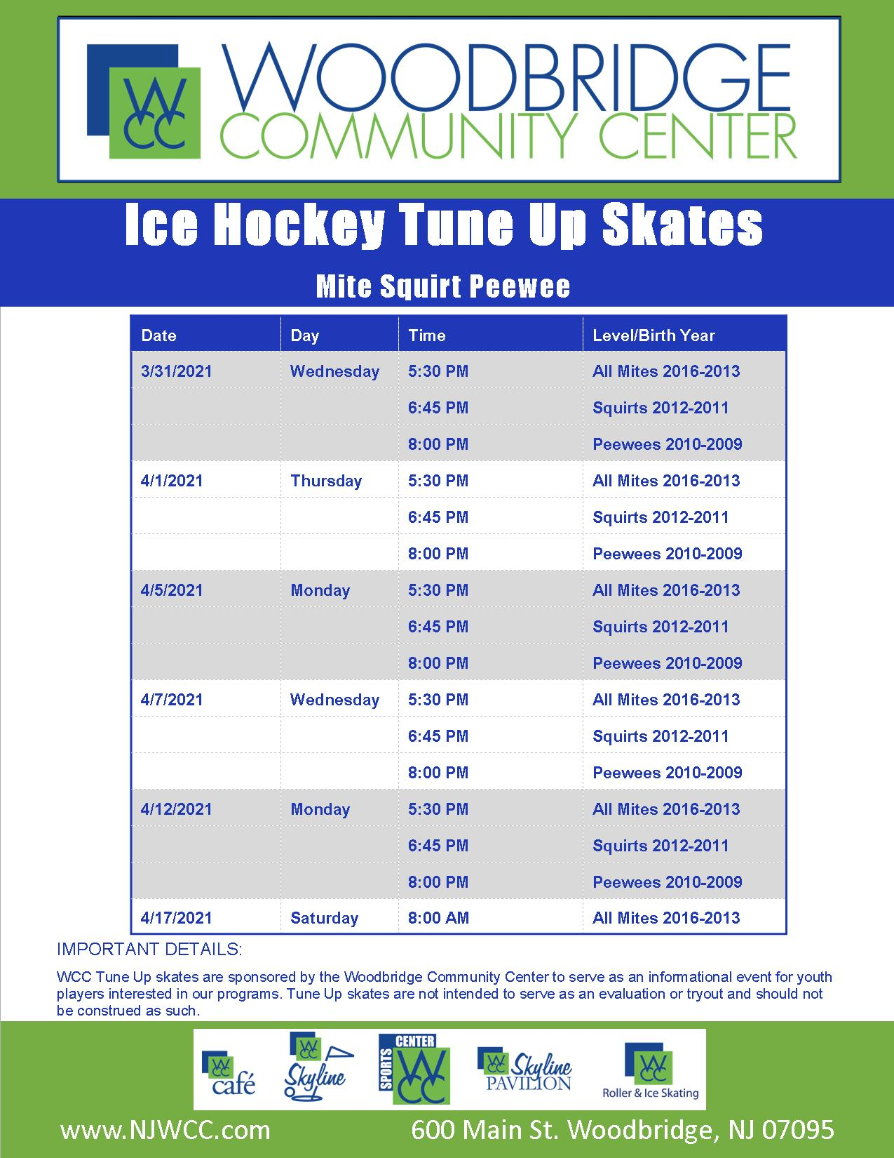 Squirt and Peewee Ice Hockey Tune Up Brochure Link